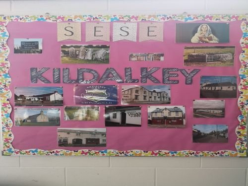 SESE Kildalkey website