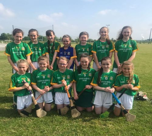 Meath Camogie